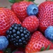 Fresh Berries Delivered to your Door