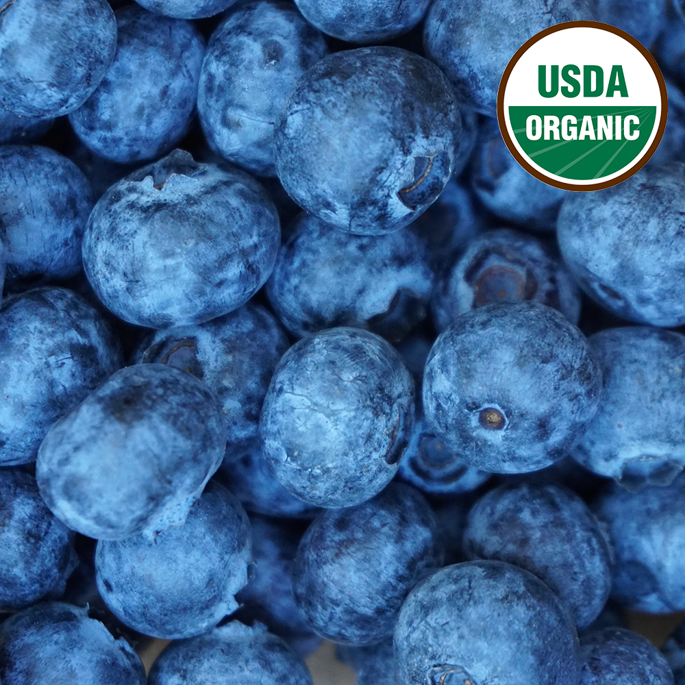 Organic Blueberries closeup